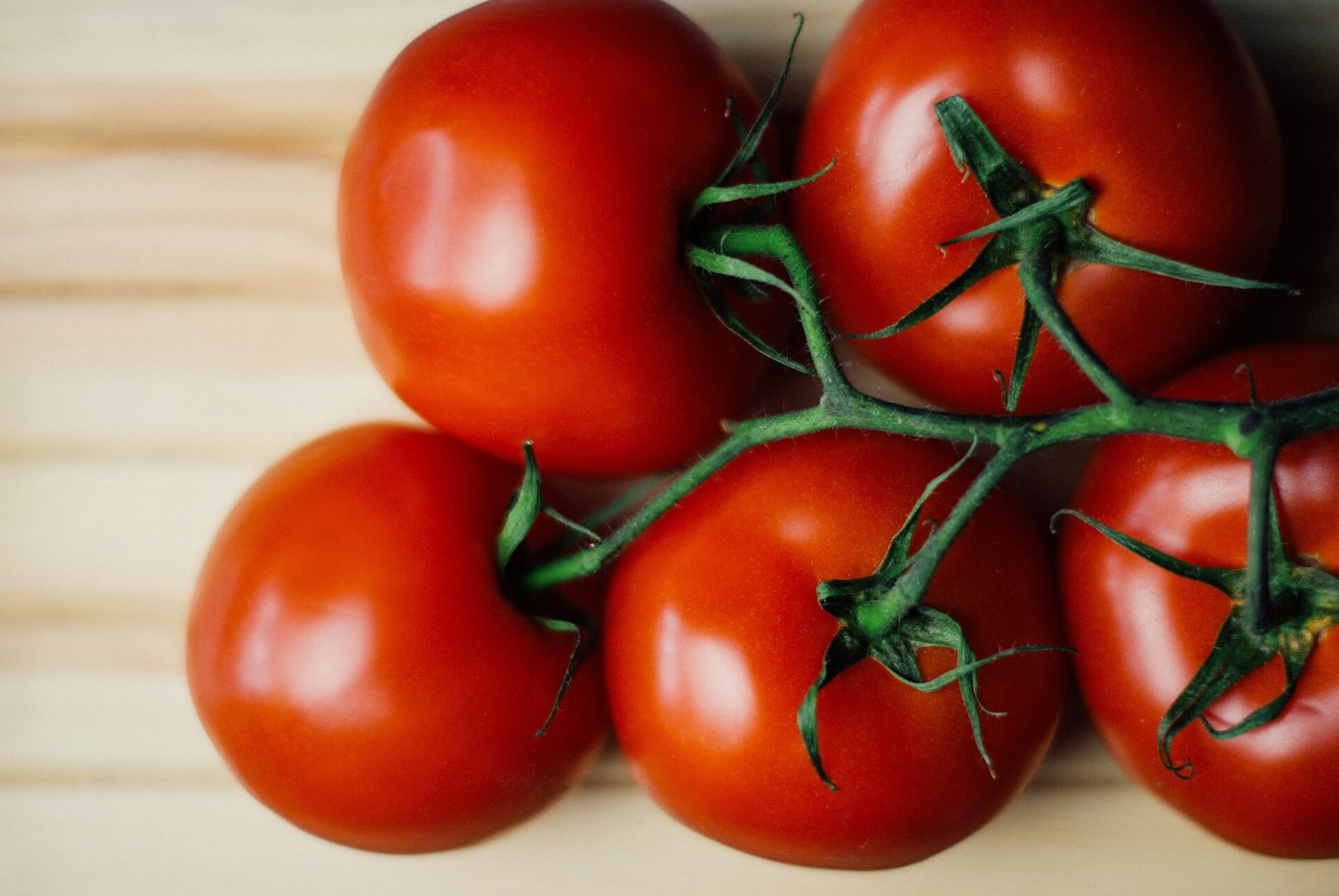 Tomatensamen bestellen